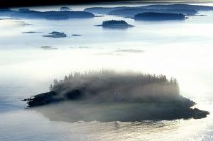 Fog_flickr